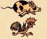 pig rooster